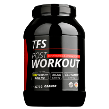 The Fitness Store POST WORKOUT 2270g